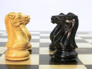 cavalli di scacchi